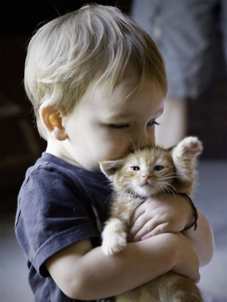 cute kid with cat
