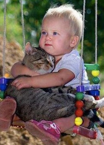 child huggin cat